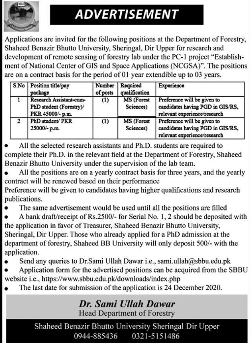 Research Assistant Jobs in Shaheed Benazir Bhutto University
