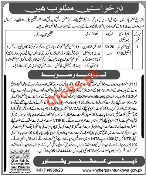 NTS Jobs in Peshawar 2021 Application Form, Government of KPK Recruitment