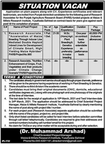 Faisalabad Maize & Millets Research Institute Jobs 2021 For Research Associate