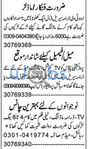 Latest Jobs in Lahore For Modeling